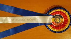 Panglica Campion Romania Junior - Terra Spirit Aratus - Nikos Terra Happy